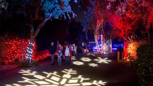 when do the zoo lights start san francisco zoo celebrates start of annual zoolights holiday