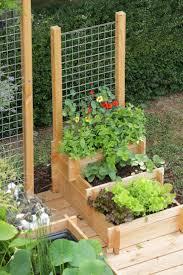 best small gardens ideas on pinterest garden design courtyard and