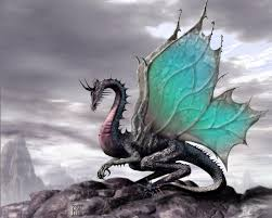 wallpaper zone beautiful colours dragon wallpapers beautiful