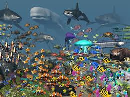 vr ocean aquarium 3d android apps on google play