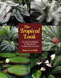 Tropical Plants Images - the tropical look an encyclopedia of dramatic landscape plants