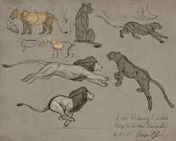 how to draw animals course big cats the art of aaron blaise