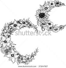 moon flower stock images royalty free images vectors