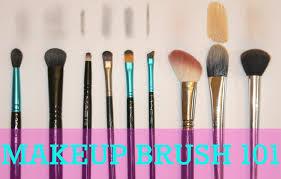 blushing basics makeup brush 101