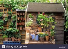 private garden london design susy smith plants in small pots