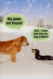 Christmas Dog Meme - paws are frozen funny dog christmas card by nobleworks