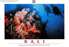 learn to scuba dive in bali photos huffpost