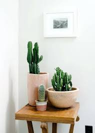 artificial plants for home decor india best plants that suit your