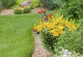 Garden Soil Types - types of soil all you need to know bob vila