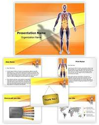 8 best digestive system powerpoint templates images on pinterest