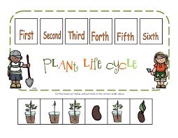 preschool printables plant life cycle printable science plants