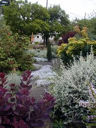 singing gardens san diegos landscape and garden designer hopes