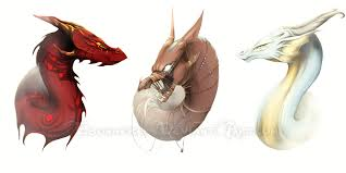 dragon sketches by ebonmere on deviantart