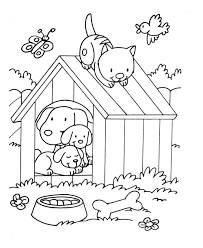 dog cat birdjpg animal coloring pages for kids to print u0026 color