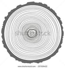 vector natural illustration of engraving saw cut tree trunk