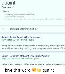 Meme Dictionary Definition - quaint kweint adjective attractively unusual or old fashioned quaint