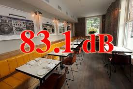 Dishwasher Decibel Level Comparison Decibel Levels In New York U0027s Hottest Restaurants Eater Ny
