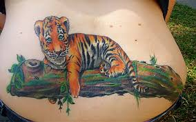 lazy tiger cub by alekspunktattoos on deviantart