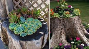 Pictures Of Tree Stump Decorating Ideas Décor Your Garden With These Tree Stump Ideas U2013 Univind Com