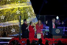 the day lights national tree for 1st time news