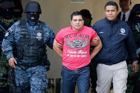 gulf cartel improving anti crime policy in mexico