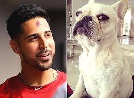 Rug Burn Gio Gonzalez Suffers Rug Burn On Forehead Wrestling With Pet