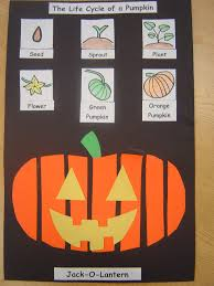 Halloween Crafts For 1st Graders Mrs T U0027s First Grade Class Life Cycle Of A Pumpkin