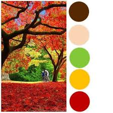fall color pallette pinterest inspired fall color palette pink paislee