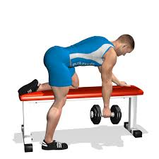 Flat Bench Dumbell Evolutionfit One Arm Dumbbell Row On Flat Bench