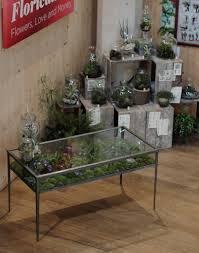 decor terrarium coffee table little terrarium desk terrarium