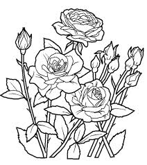 flower garden coloring pages adults printable color medieval