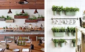 plante cuisine decoration la fabrique à déco des plantes dans la cuisine déco etagères