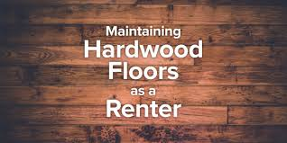 how to protect and maintain hardwood floors as a renter