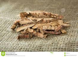 Sweet Flag Herb Calamus Root Or Sweet Flag Stock Image Image Of Mytle 61990717