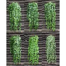 compare prices on green artificial plants online shopping buy low