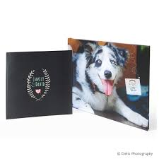 dog coffee table books coffee table book floricolor