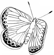 free butterfly coloring pages printable butterfly coloring