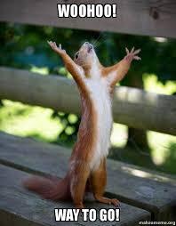 Way To Go Meme - woohoo way to go happy squirrel make a meme