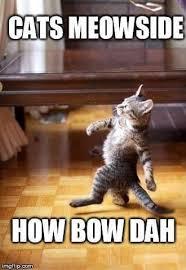 Happy Tuesday Meme - happy tuesday how bow dah album on imgur