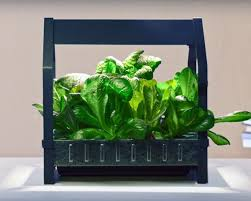 Ikea Outdoor Planters by Ikea Launches Indoor Garden That Can Grow Food All Year Round
