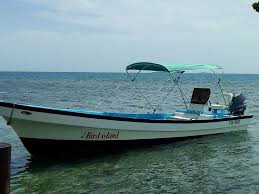 bird island belize rental bird island placencia placencia best places to stay stays io