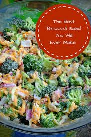 best 25 broccoli salads ideas on broccoli salad