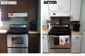 Kitchen Cabinet Glazing Glazing Kitchen Cabinets Before And After Alkamedia Com