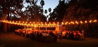 garden dinner party 1