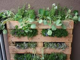 Garden Containers Ideas - herb garden ideas for a balcony interior design