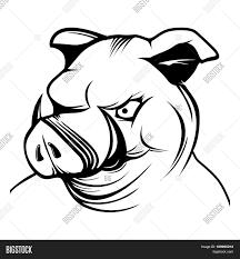 vector pig head cartoon mascot vector u0026 photo bigstock