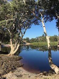 tea tree lake and a snake picture of lake