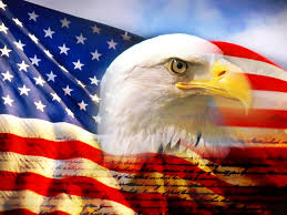 Flags American American Flag Eagle Pictures