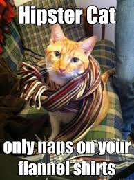 Hipster Kitty Meme - hipster cat is better than you misc quickmeme