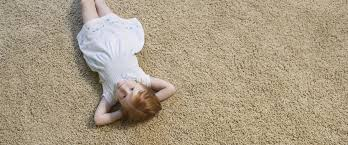 Professional Rug Cleaning Austin Carpet Cleaning Austin Insta Dry Austin